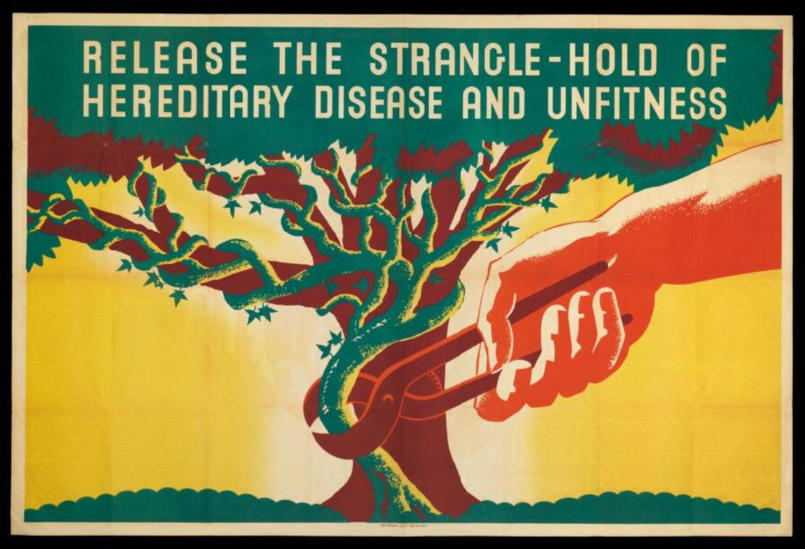 A Eugenics Society poster (1930s) from the Wellcome Library Eugenics Society Archive.