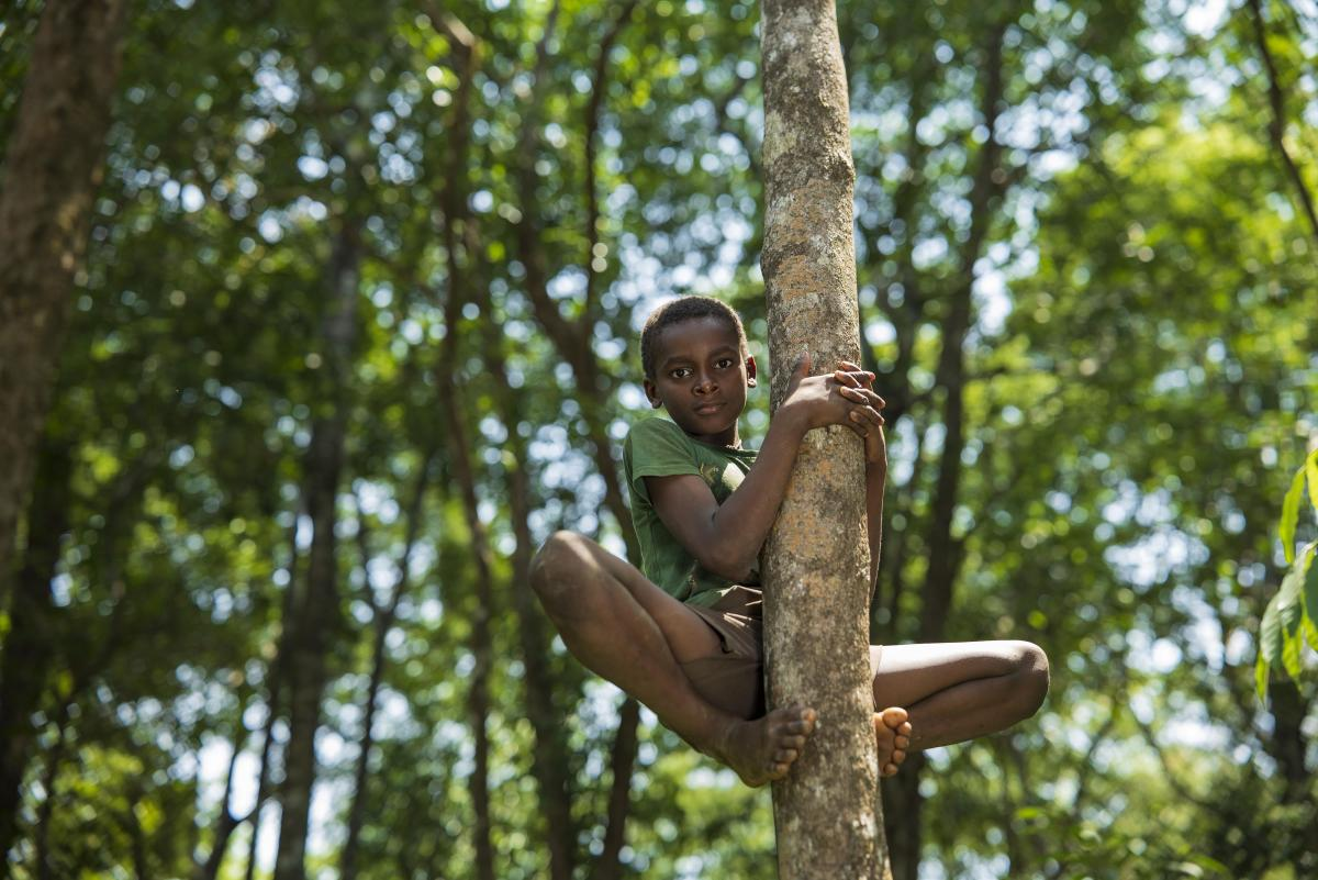 """""""I belong here."""" This curious boy was so eager to showcase his jungle skills to us thatwithin no time, he was on this treetop."""