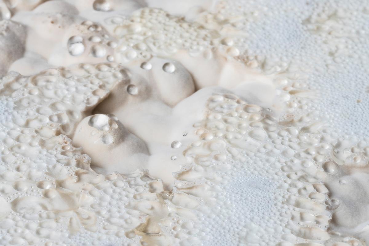 close up shot of white mycelium material